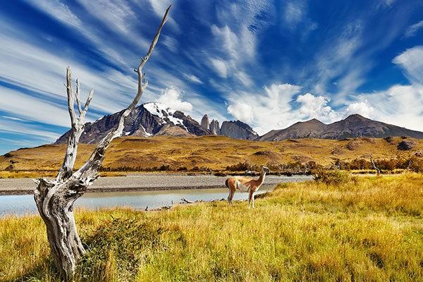 travel to patagonia
