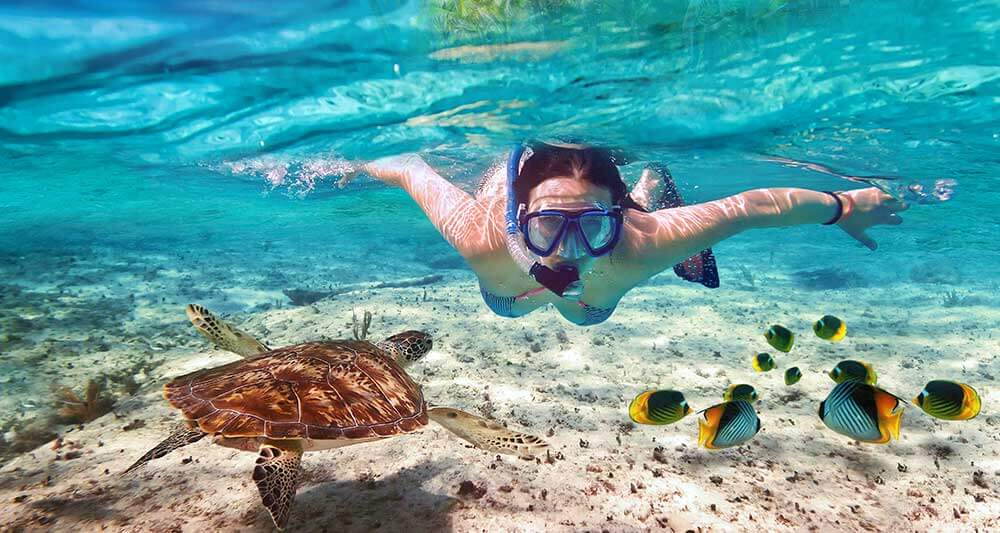 caribbean snorkel tours