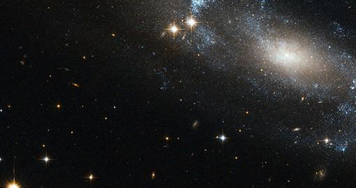 Caye Caulker Belize Stargazing