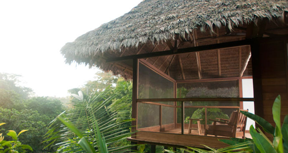 best amazon lodges