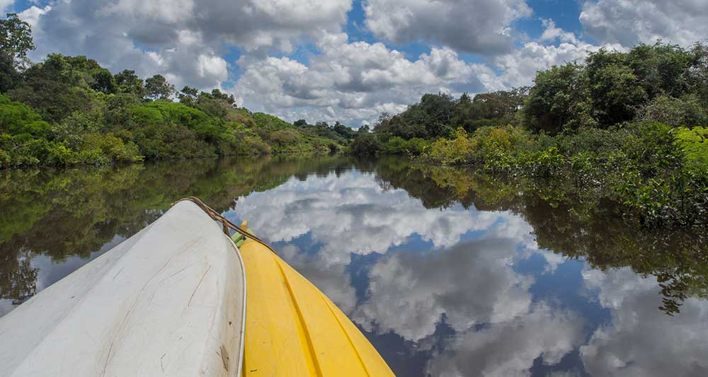 kayak tour amazon