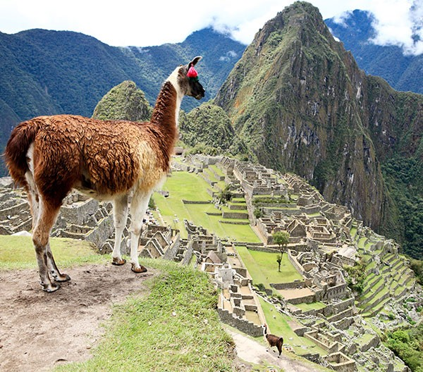 Luxury tour to Machu Picchu