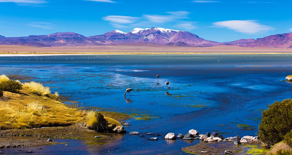 best wetlands latin america