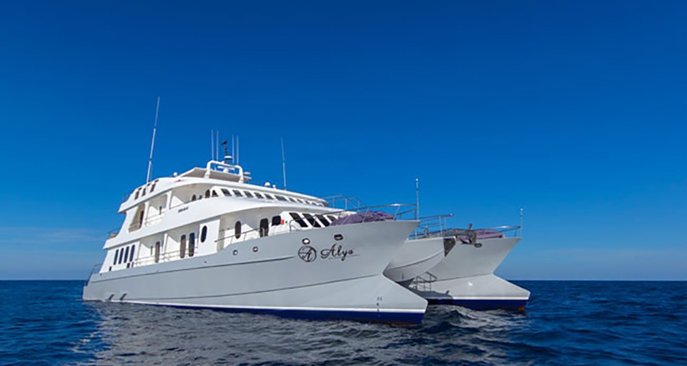 Galapagos Cruise Offers