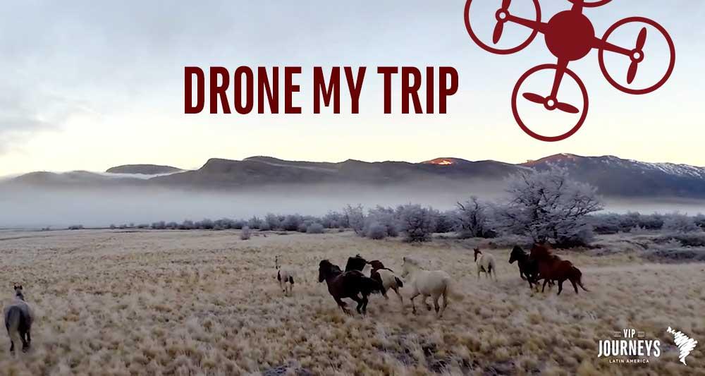 Drone My Trip
