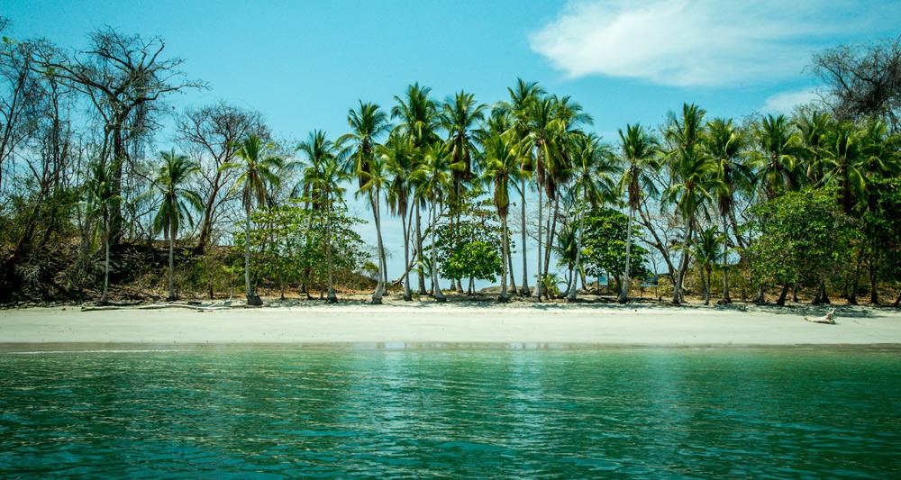 Isla Palenque Panama