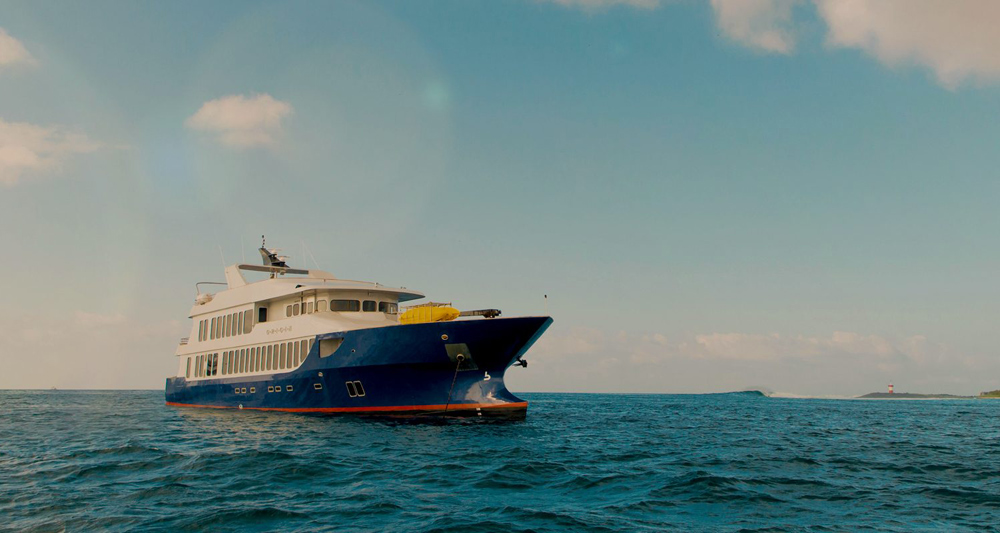 Theory Origin Yacht Charter